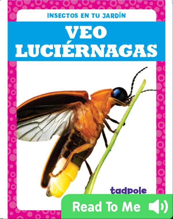 Veo luciérnagas (I See Fireflies)