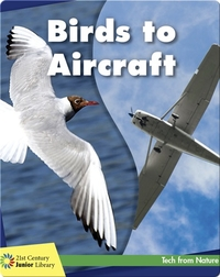 Birds to Aircraft