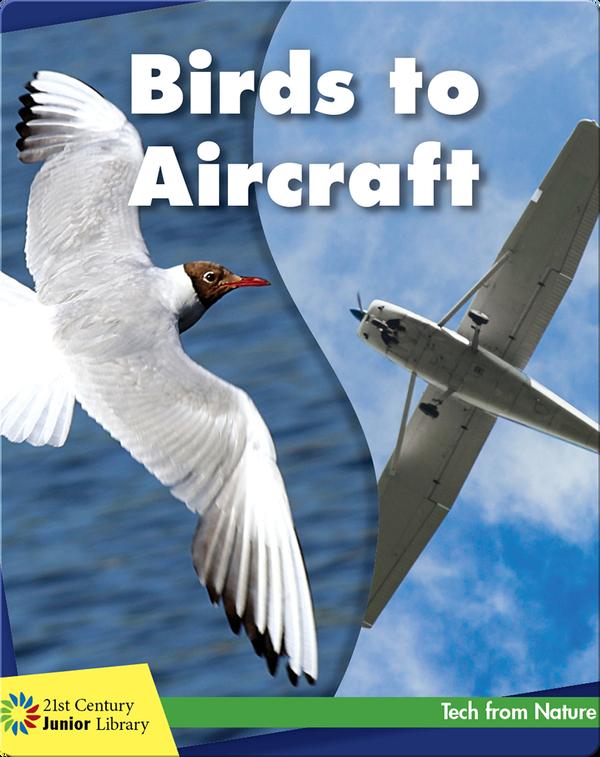 Birds to Aircraft
