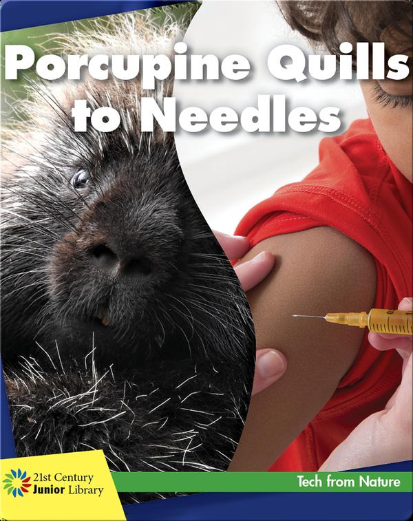 Porcupine Quills to Needles