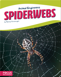 Animal Engineers: Spiderwebs