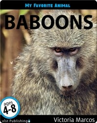 My Favorite Animal: Baboons