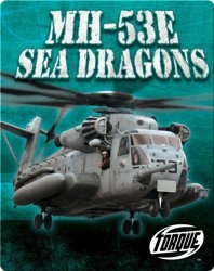 MH-53E Sea Dragons