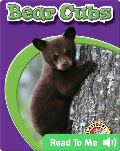 Bear Cubs: Watch Animals Grow