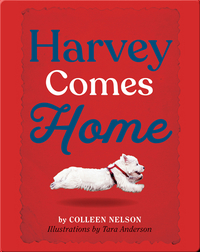 Harvey Comes Home