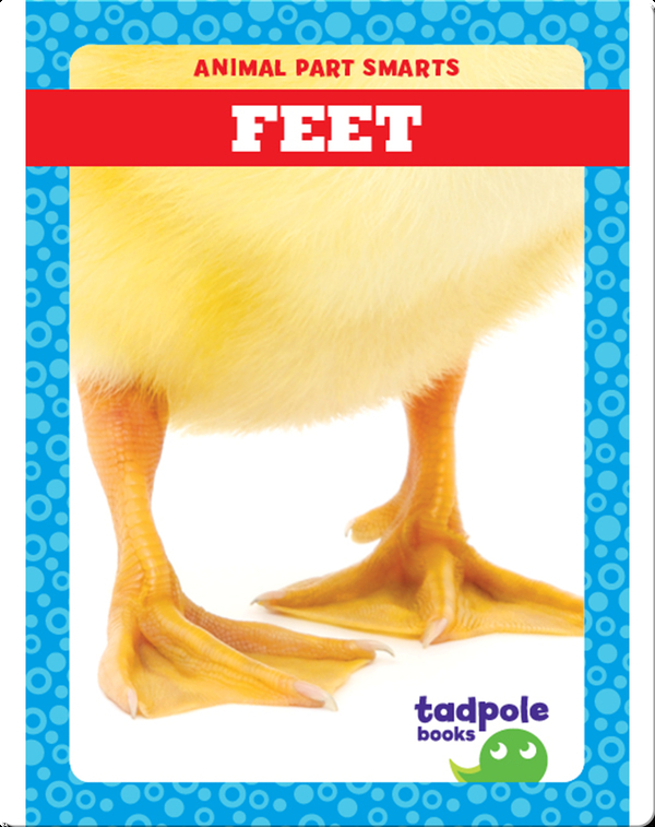 Animal Part Smarts: Feet