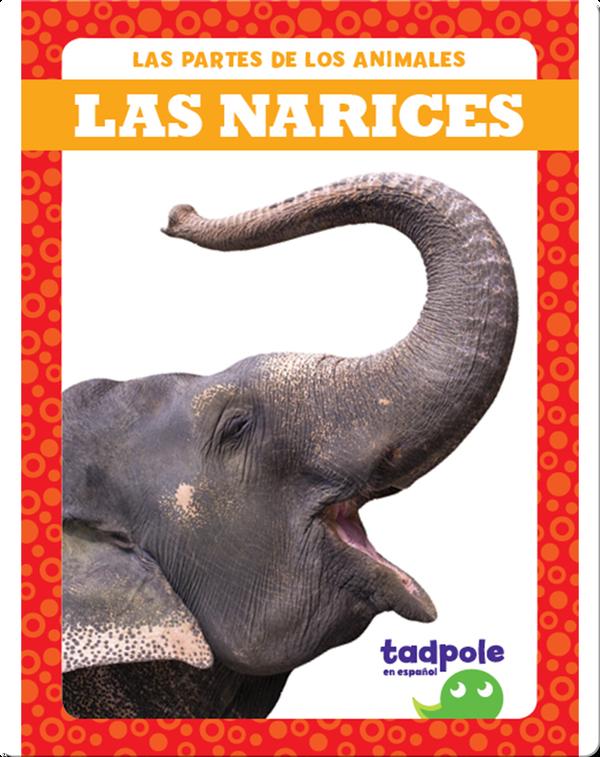 Las partes de los animales: Las narices