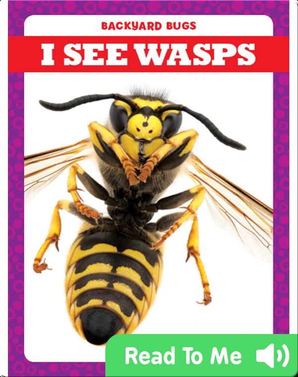 I See Wasps
