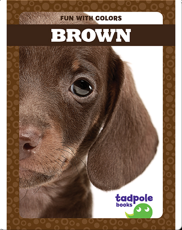 Fun with Colors: Brown