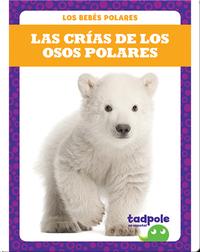 Las crías de los osos polares