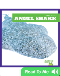 Shark Bites: Angel Shark