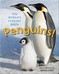 Penguins!: The World's Coolest Birds