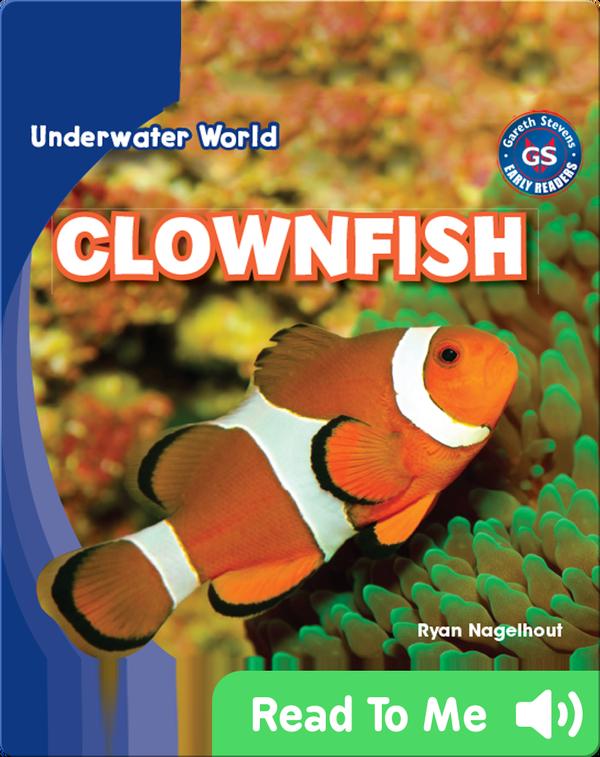 Underwater World: Clownfish