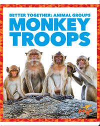 Monkey Troops
