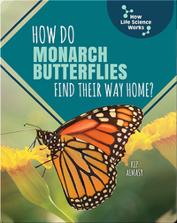 How Do Monarch Butterflies Find Their Way Home?