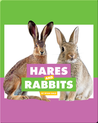 Comparing Animal Differences: Hares and Rabbits