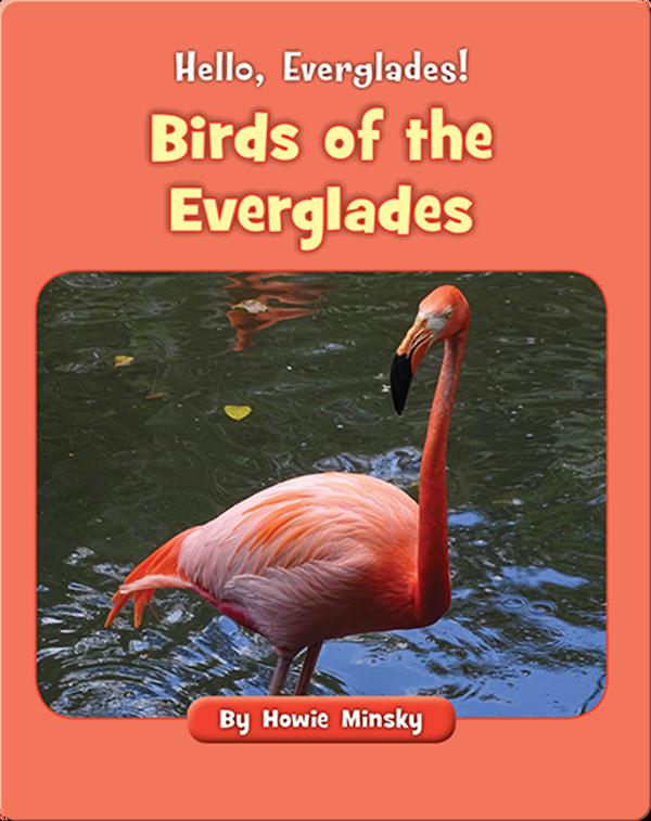 Hello, Everglades!: Birds of the Everglades