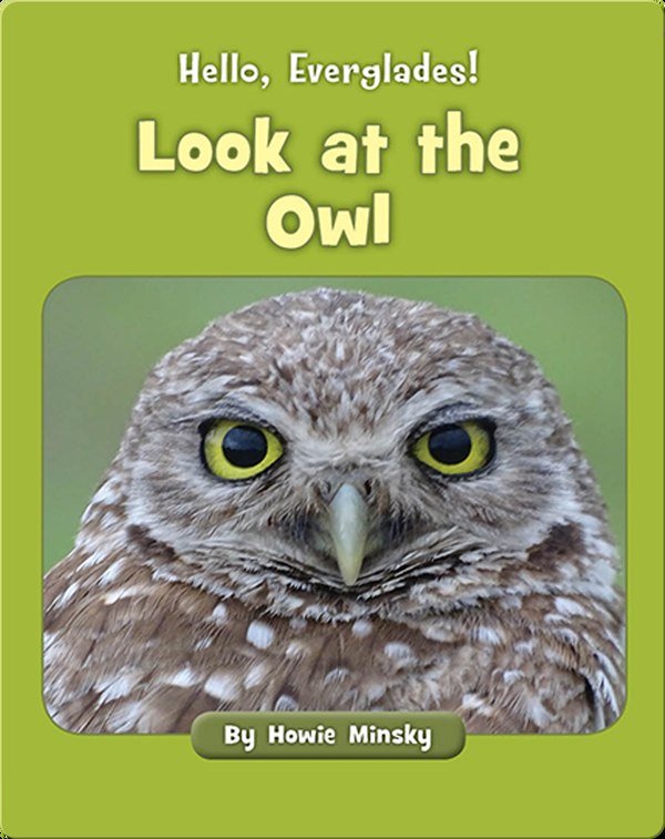 Hello, Everglades!: Look at the Owl