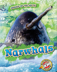Animals of the Arctic: Narwhals