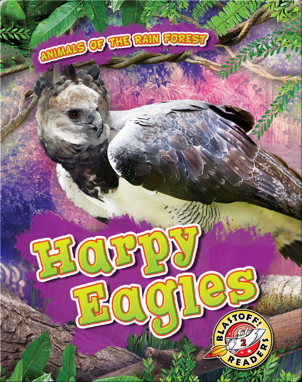 Animals of the Rain Forest: Harpy Eagles