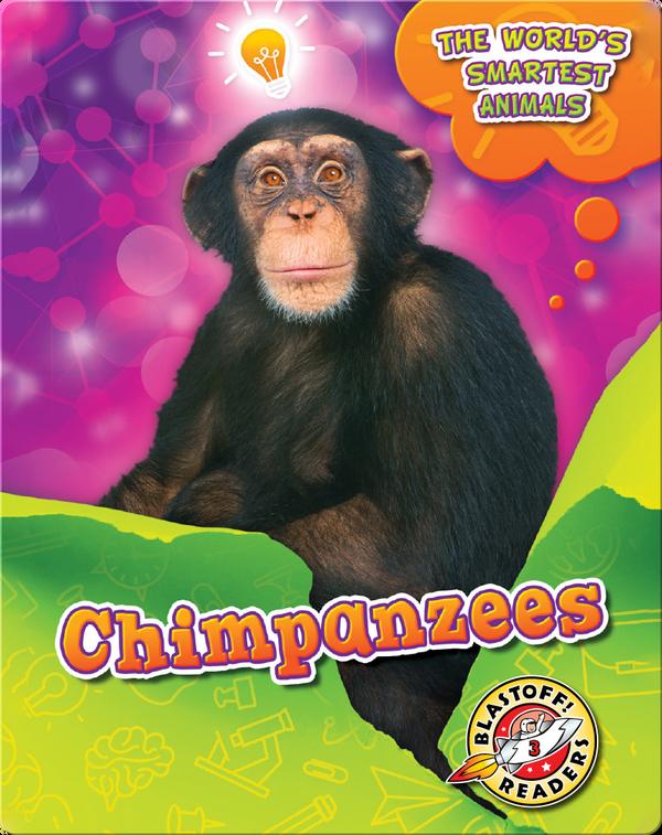 The World's Smartest Animals: Chimpanzees