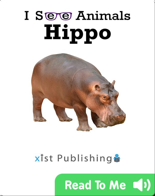 I See Animals: Hippo