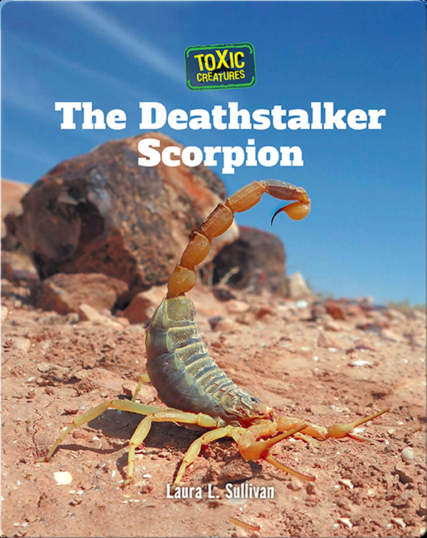 Toxic Creatures: The Deathstalker Scorpion