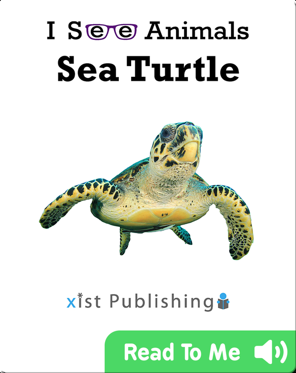 I See Animals: Sea Turtle