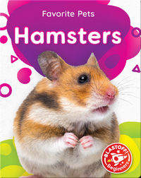 Favorite Pets: Hamsters