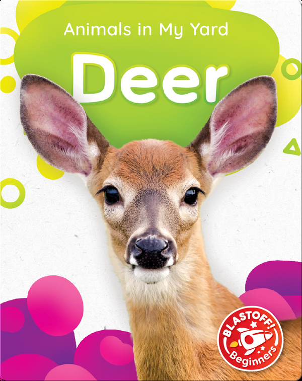 Animals in My Yard: Deer