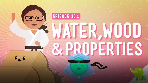 Crash Course Kids: Water, Wood, and Properties