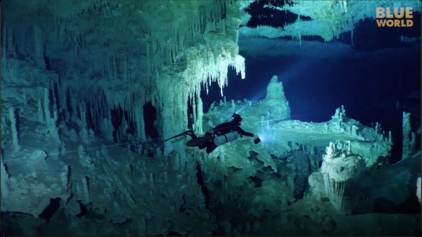 Jonathan Bird's Blue World: Bird Cage Cave Dive