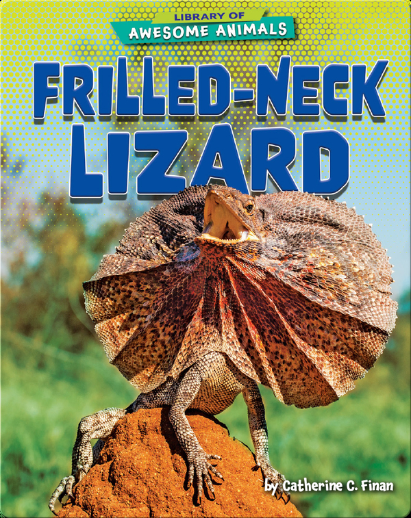 Awesome Animals: Frilled-Neck Lizard