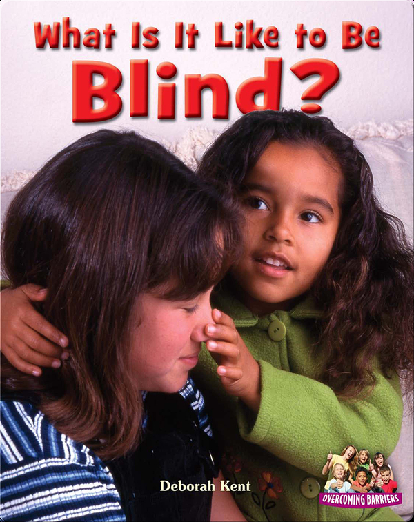 What Is It Like to Be Blind?