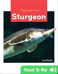 Freshwater Fish: Sturgeon