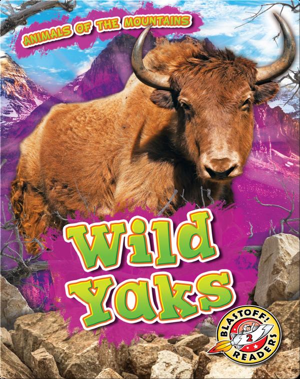 Animals of the Mountains: Wild Yaks
