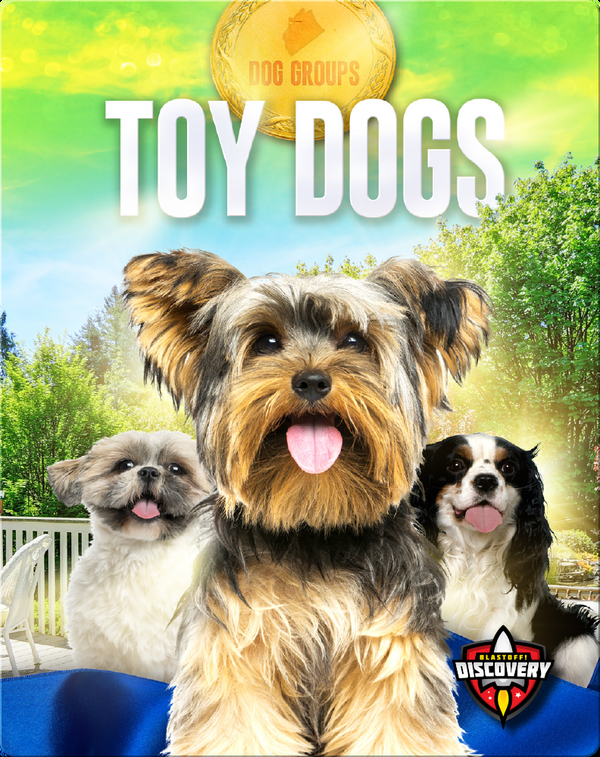 Dog Groups: Toy Dogs