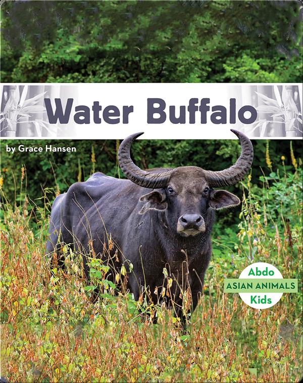 Asian Animals: Water Buffalo