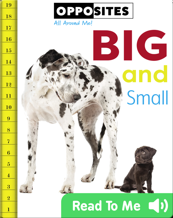 Opposites: Big and Small