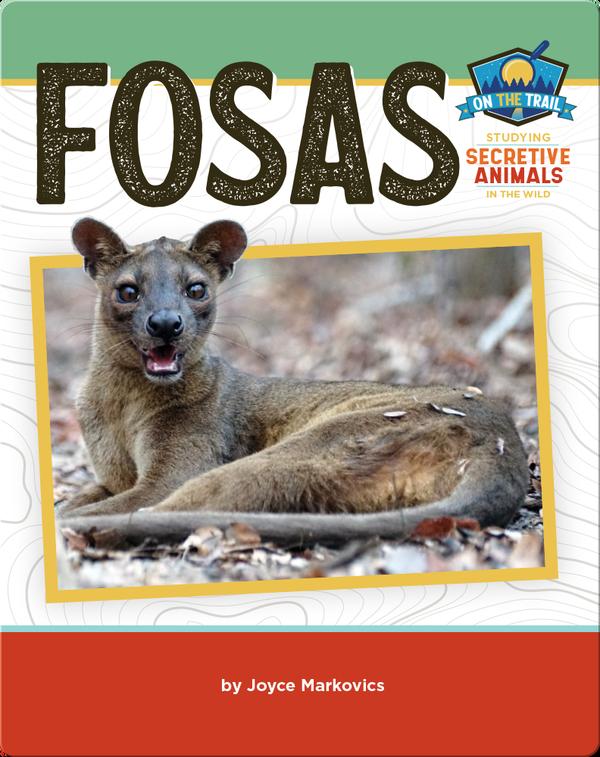 Study of Secretive Animals: Fosas