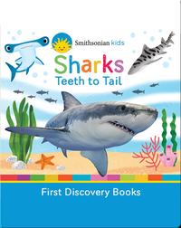 Sharks: Teeth to Tail