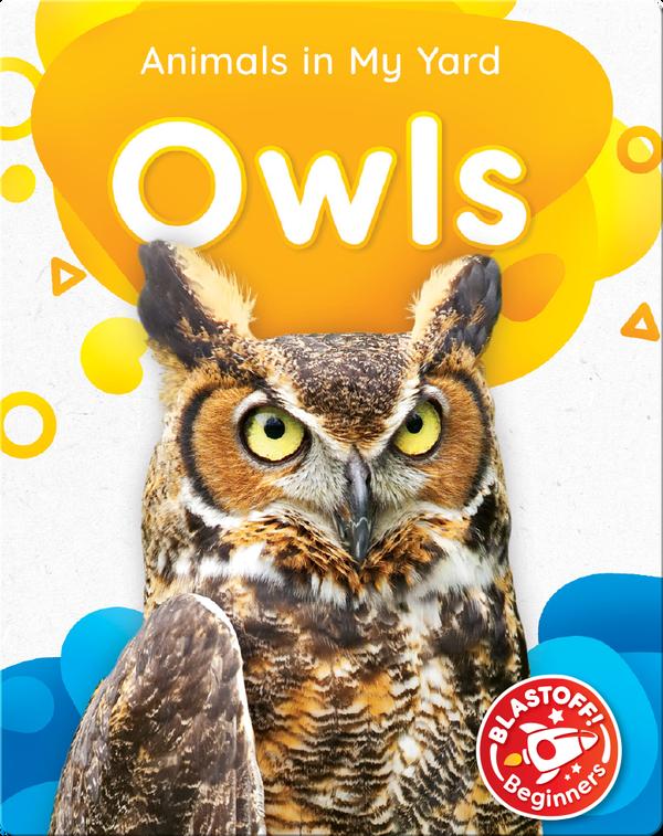 Animals in My Yard: Owls