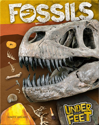 Under Our Feet: Fossils