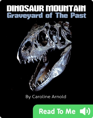 Dinosaur Mountain: Graveyard Of The Past