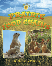 Prairie Food Chains