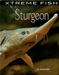 Xtreme Fish: Sturgeon