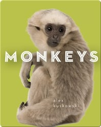 Zoo Animals: Monkeys