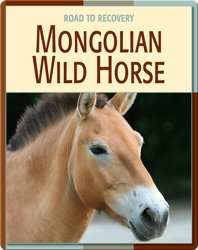 Road To Recovery: Mongolian Wild Horse