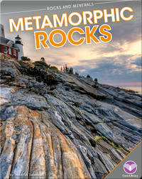 Rocks and Minerals: Metamorphic Rocks