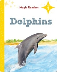 Magic Readers: Dolphins